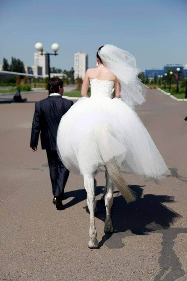 Wanita Kuda