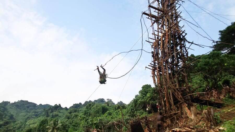 ritual land diving