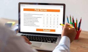 survey online dibayar rupiah