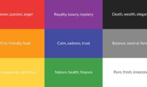 tips memilih warna logo