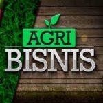 aplikasi agribisnis